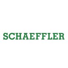 Schaeffler - Eutktoid